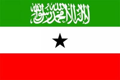 Somaliland+Flag.jpg