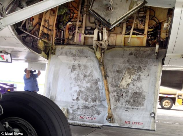 Hiding place: This shows where the teenager stowed away on the Hawaiian Airlines Boeing 767
