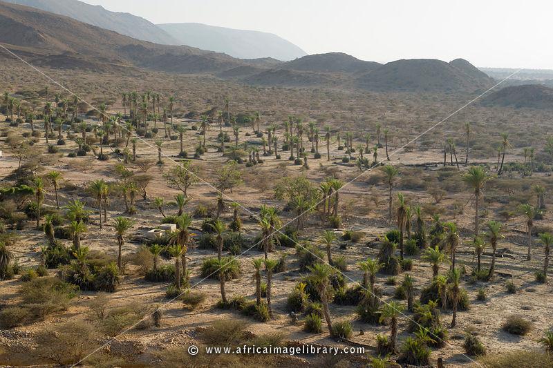 Somalia-1103-0119_xlarge.jpg