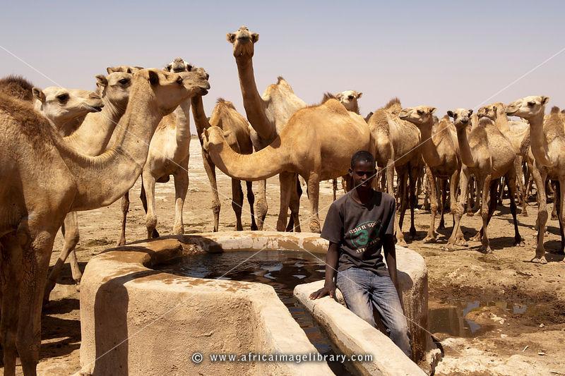 Somalia-1103-0208_xlarge.jpg