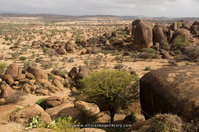 Somalia-1103-0162_xlarge.jpg