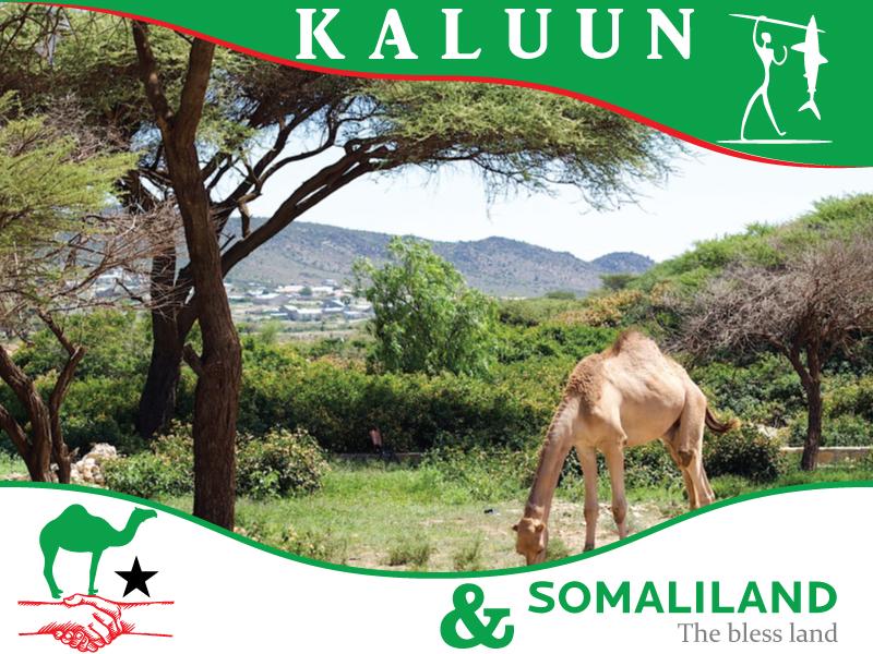 Kaluun_SL2.jpg