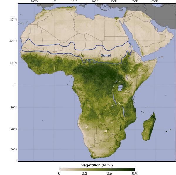 africa_vegetation.jpg