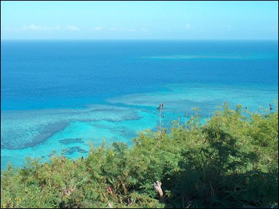 David-N-Jen-island-top_B.jpg