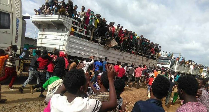 Image result for somali ethiopians Oromos