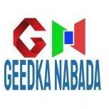 Geedka Nabada