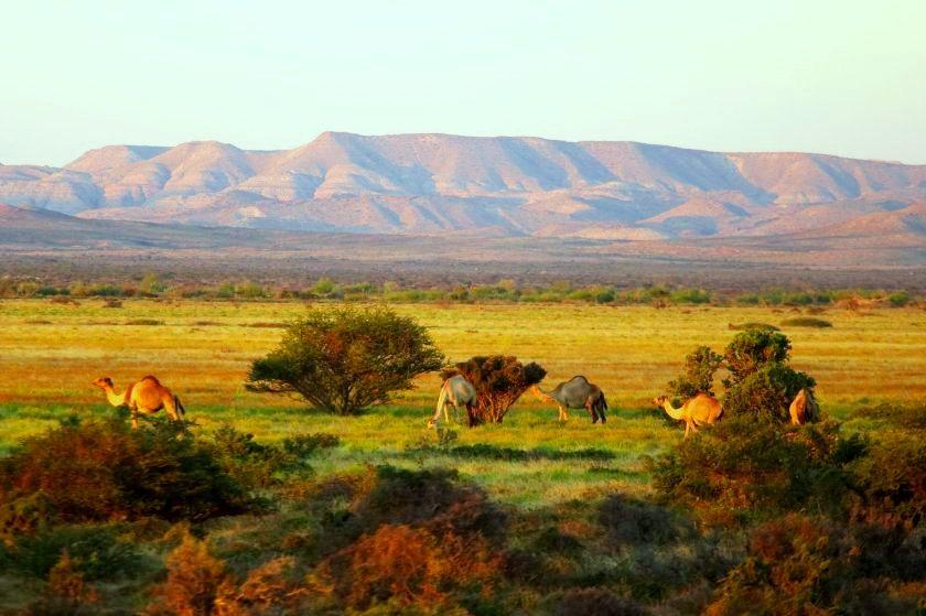 nugaal-valley-somalia