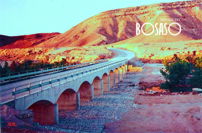 bridgetobosaso3